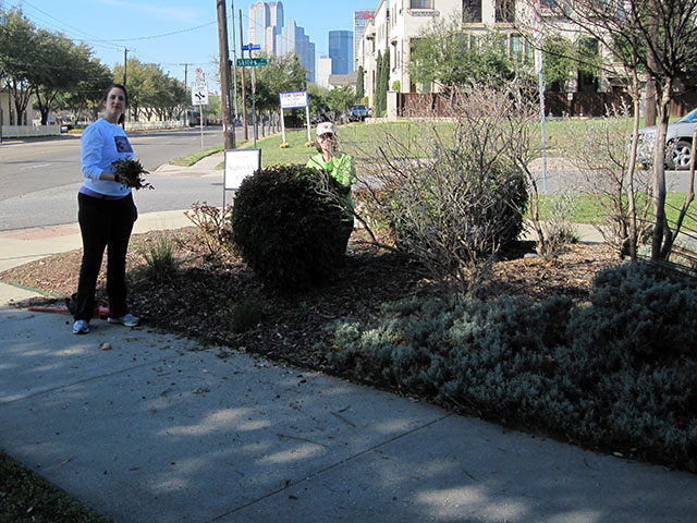 Exall Park Volunteer Clean-Up Day on October 7th