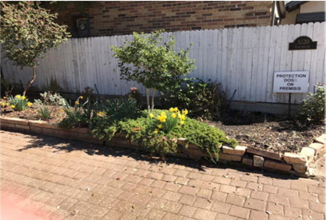 March 2017 Yard of the Month